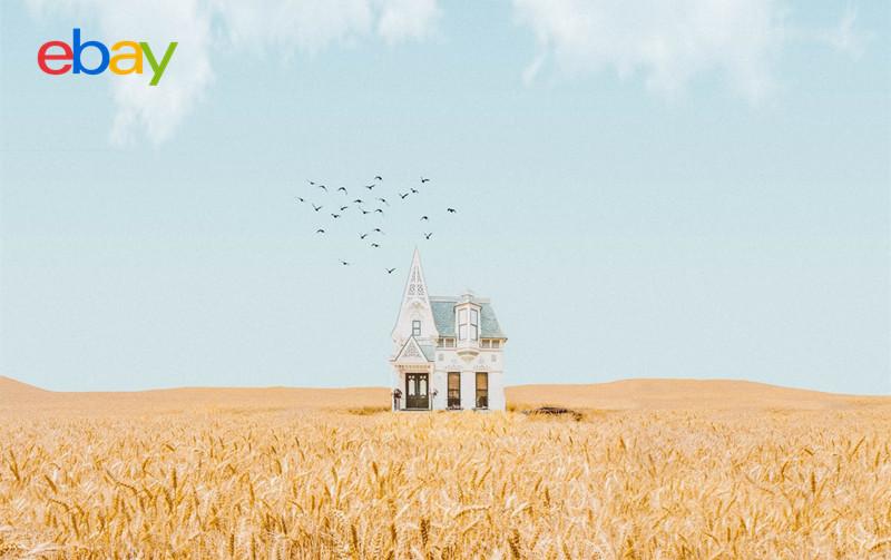 智赢ebay-智赢跨境电商预测2022年ebay将达到新高度.jpg
